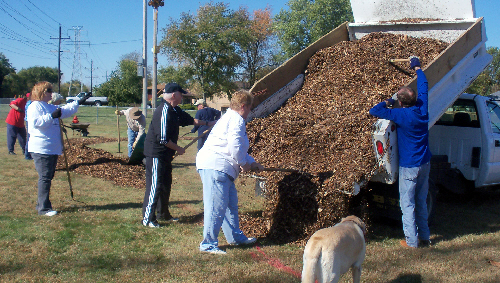Wood chip day 016.jpg