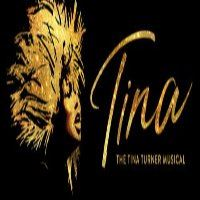 Tina Turner the Musical Logo reduced